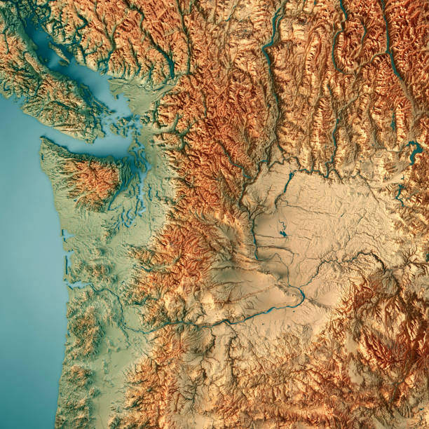 washington state usa 3d render topographic map border - topography stock photos and pictures