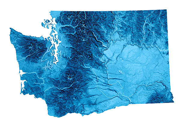 Washington Topographic Map Isolated 3D render and image composing: Topographic Map of Washington State, USA. Isolated on White. High quality relief structure! pierce county washington state stock pictures, royalty-free photos & images