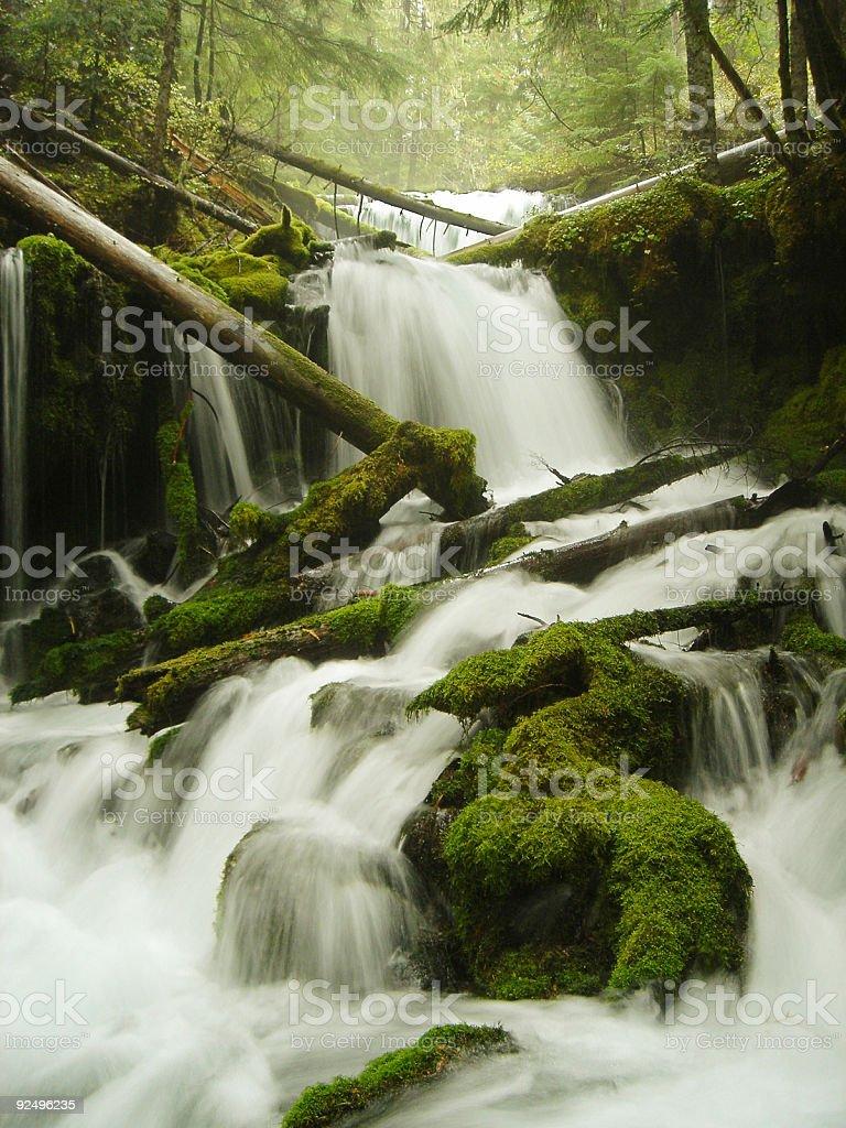 Washington's Big Spring Creek cascading over rocks royalty-free stock photo