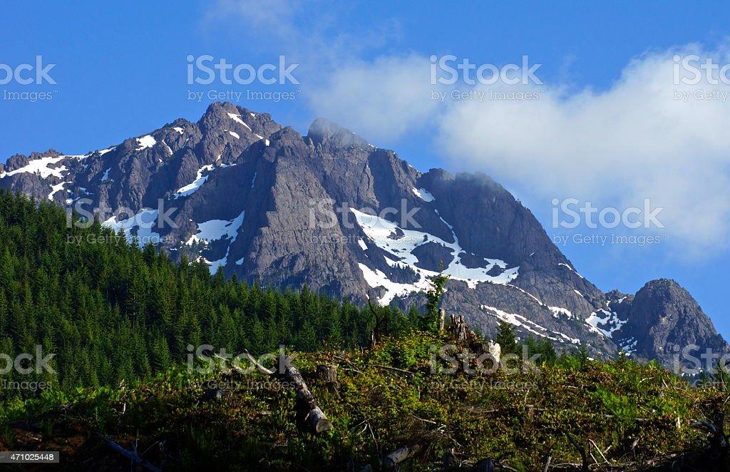 Washington's Mt. Washington stock photo