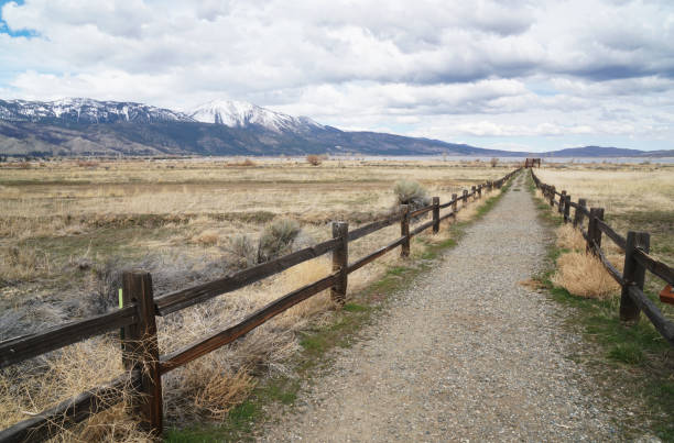 Washoe Valley in the spring stock photo