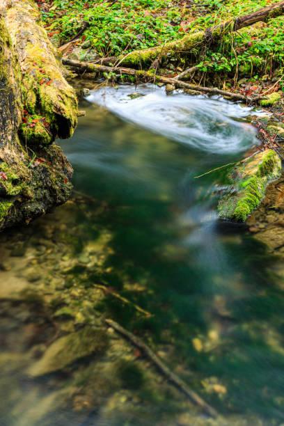 Wasserwirbel – Foto