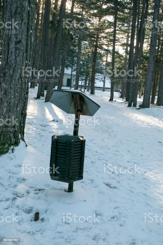 waste basket on a tree in the woods stock photo