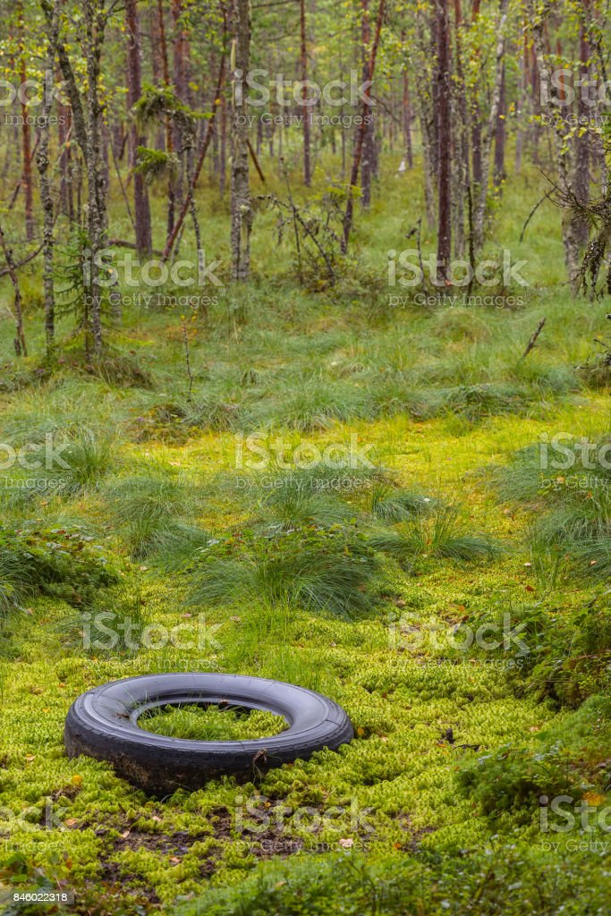 Waste in nature stock photo