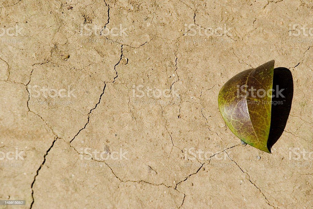 waste land and a leaf royalty-free stock photo