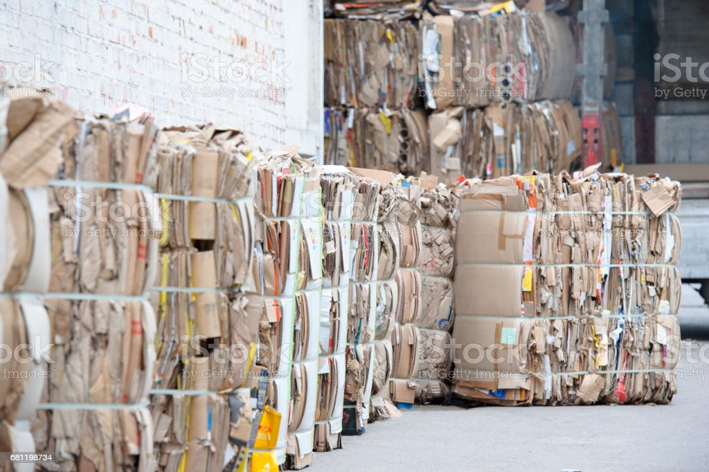 waste paper is collected and packed for recycling. Cardboard and Paper Recycling. stock photo
