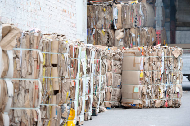 waste paper is collected and packed for recycling. cardboard and paper recycling. - karton zbiornik zdjęcia i obrazy z banku zdjęć