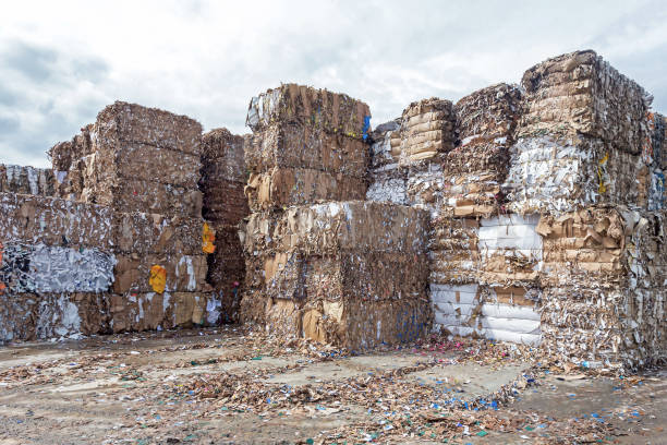 Waste paper recycling.Pile of pressed waste paper bales in the yard stock photo