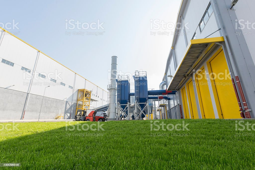Waste plant green grass stock photo