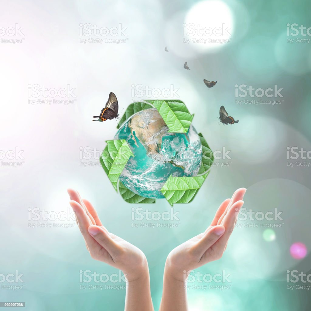 Waste recycle management, eco friendly concept: Elements of this image furnished by NASA stock photo