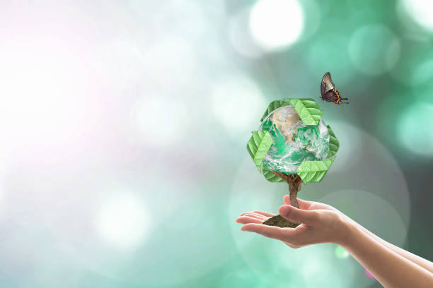 waste recycle management, energy saving awareness, ecological sustainability and tree planting concept: elements of this image furnished by nasa - biodegradabile foto e immagini stock