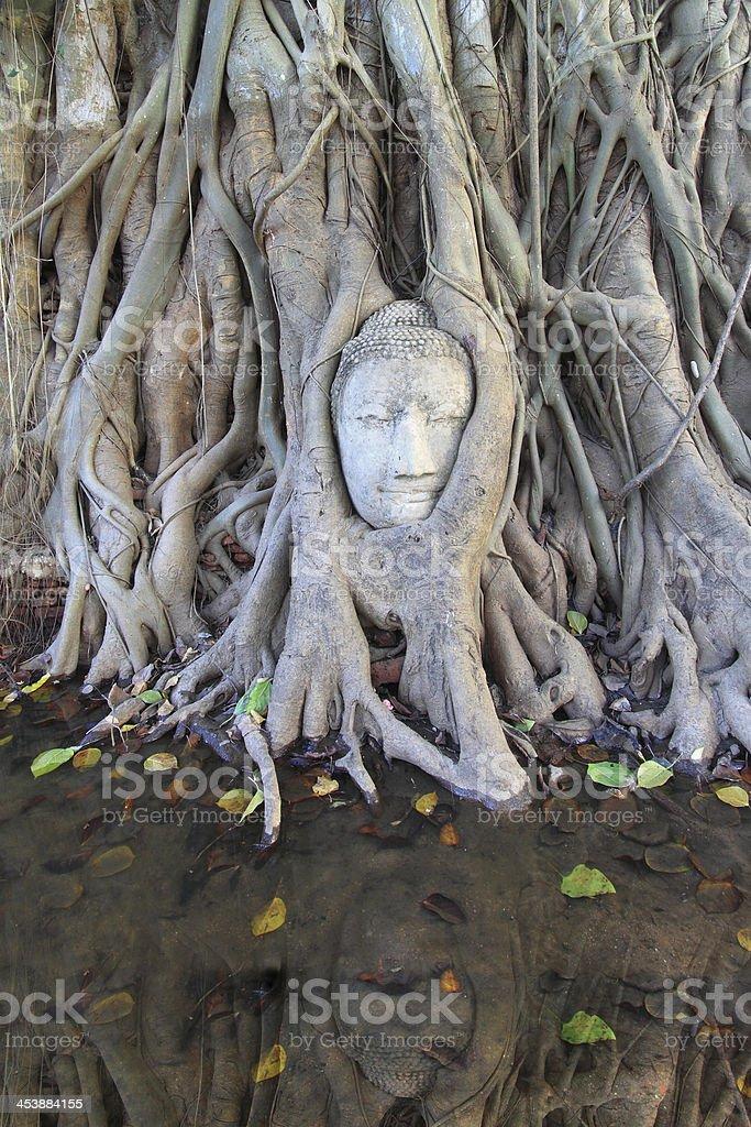 Wat Mahatat, Ayutthaya, Thailand stock photo