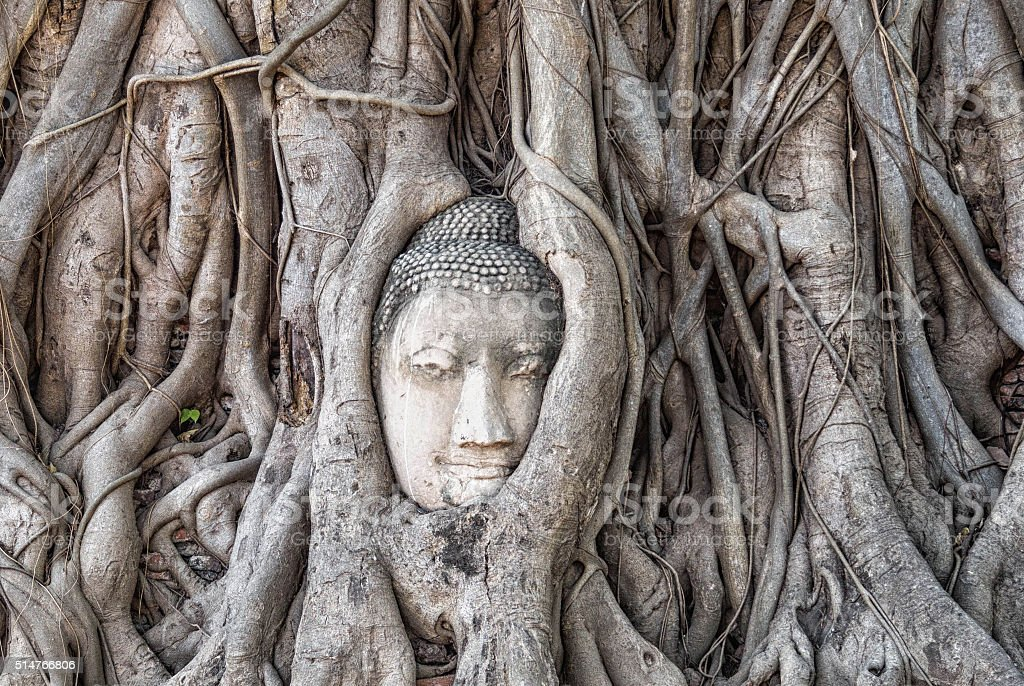Wat Mahathat temple at Ayutthaya, Thailand stock photo