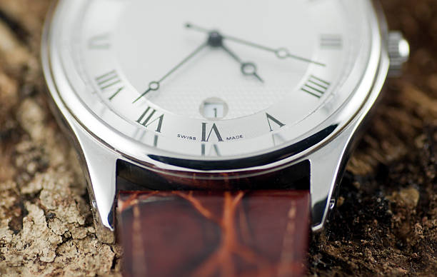 watch on tree bark - watch timepiece stock photos and pictures