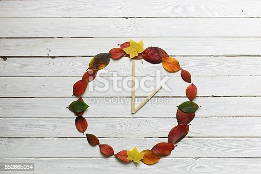 istock watches leaves on a white wooden background 852665034