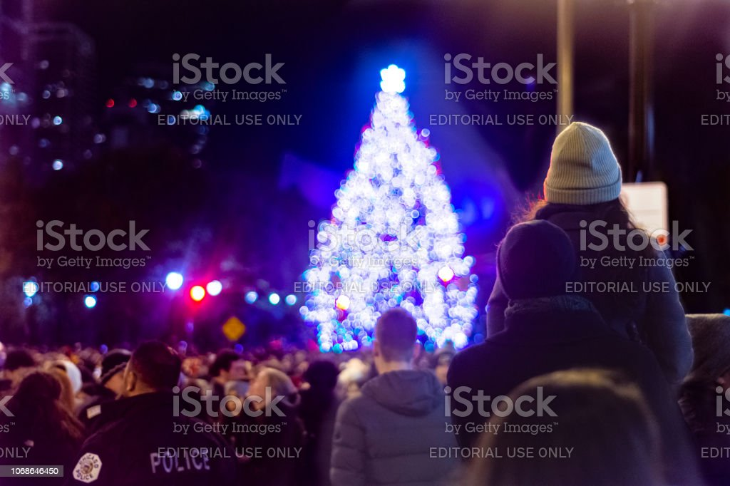 Watching a Christmas Tree stock photo