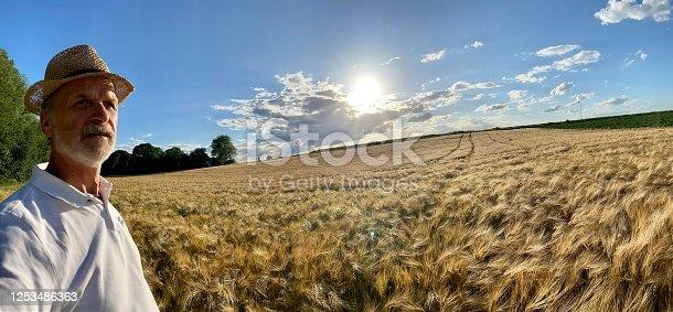 1094815168 istock photo Watching field of Barley 1253486363