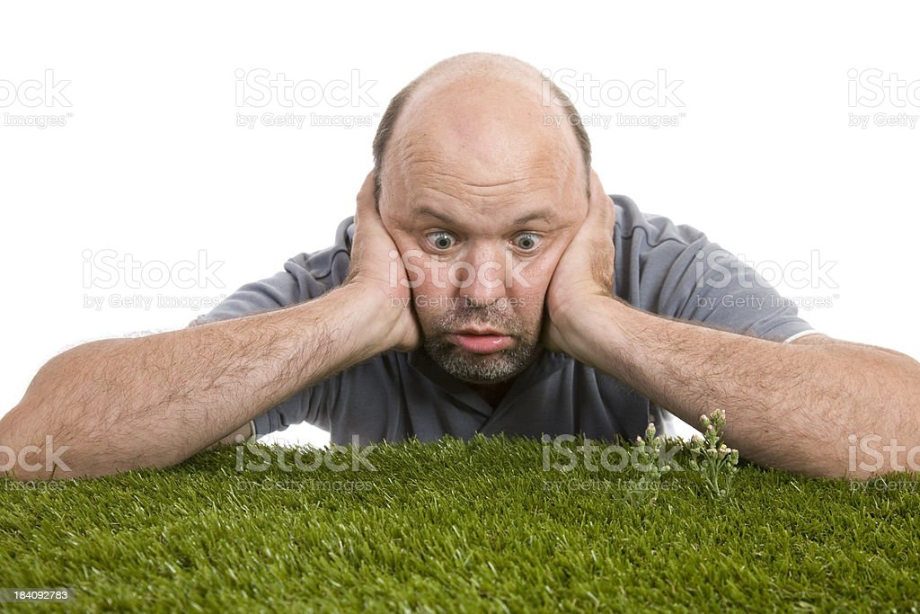 Watching Grass Grow stock photo