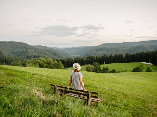 watching over black forest taken on a hiking tour through shiltach area in black forest germany black forest stock pictures, royalty-free photos & images