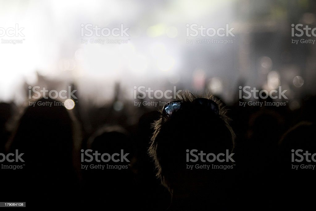 Watching Show royalty-free stock photo