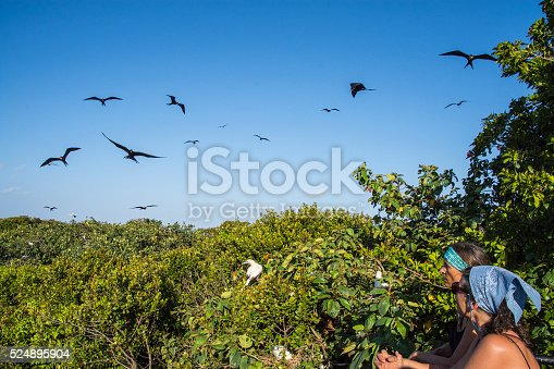 Two woman watching the birds at the bird tower. Half Moon Caye bird sanctuary. Lighthouse Reef Atoll, Belize Caribbean.