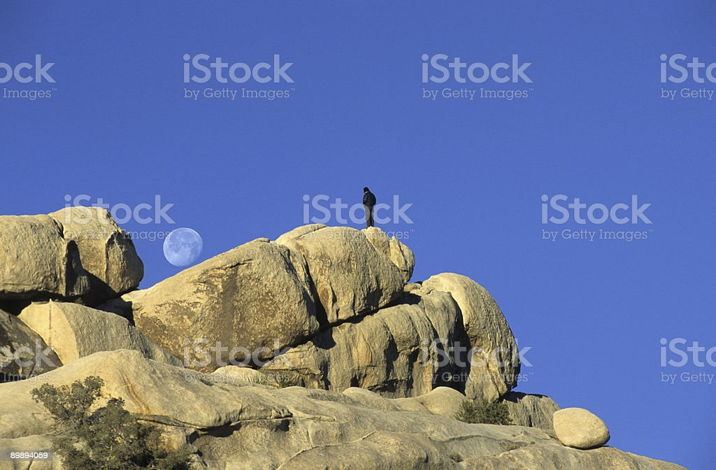 Watching the Moon royalty-free stock photo