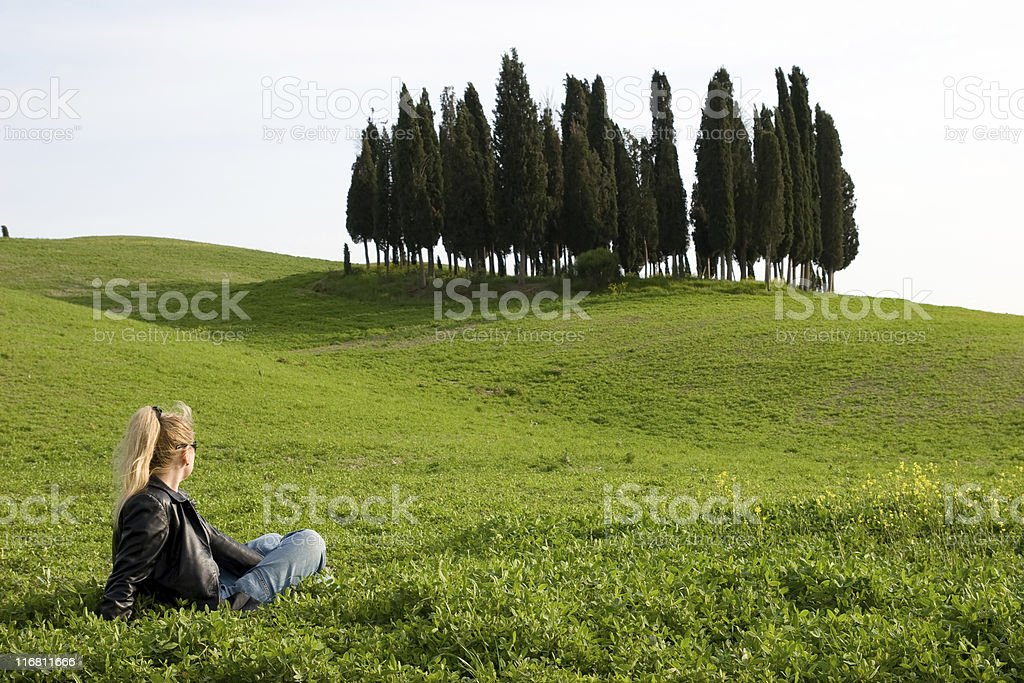 watching the nature royalty-free stock photo