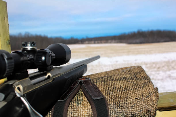 Watching the sky get darker while hunting Watching the sky get darker while hunting. hunting blind stock pictures, royalty-free photos & images