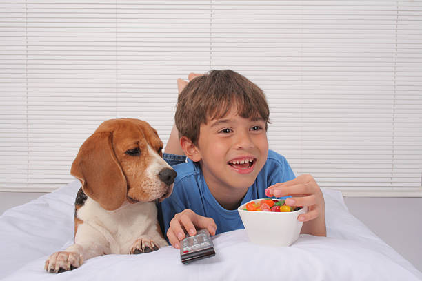 Watching TV in Bed stock photo