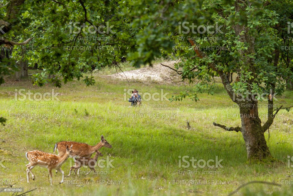 Watching wildlife stock photo