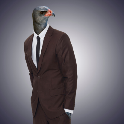 Studio portrait of a businessperson with an eagle head
