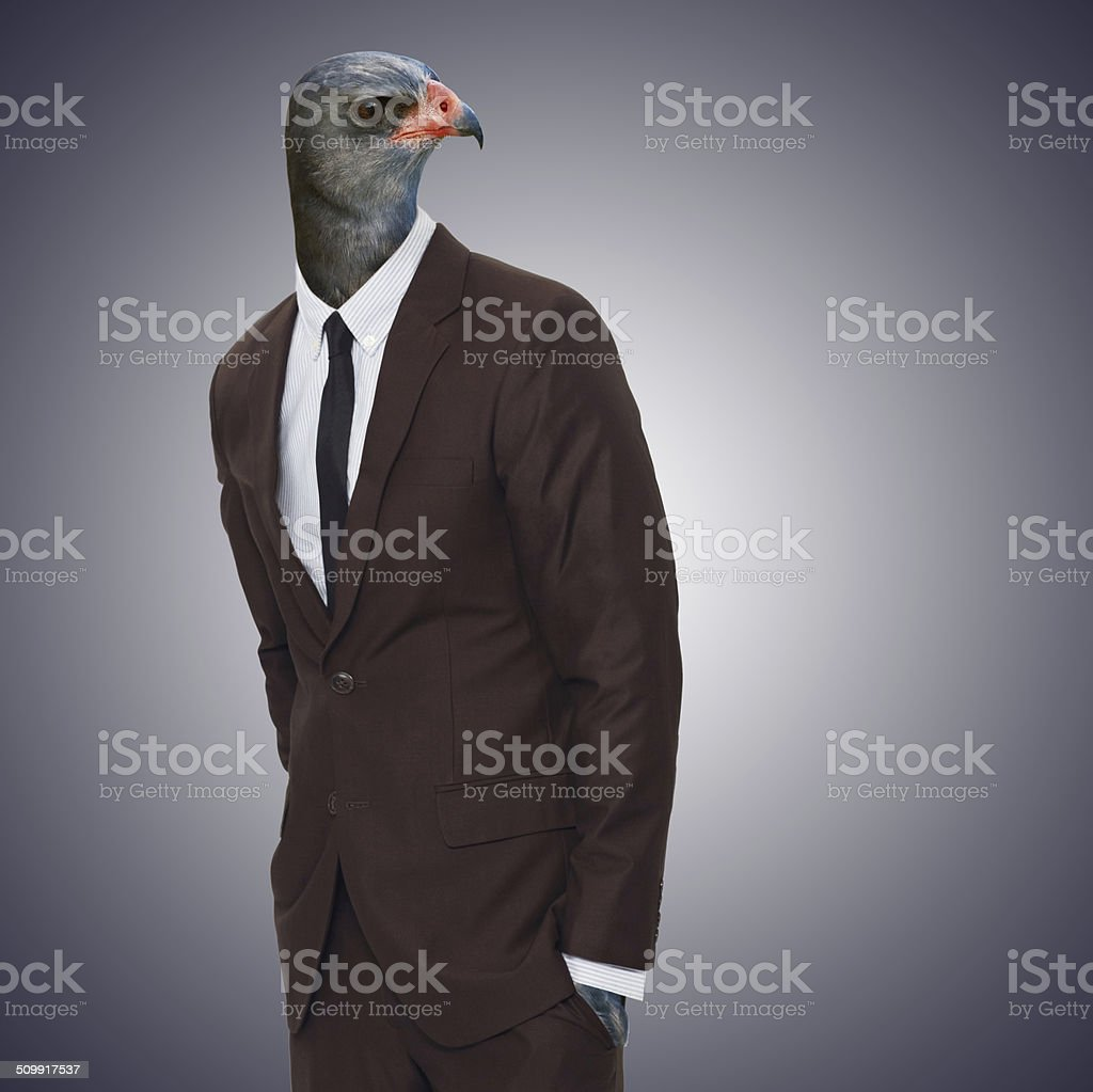 Watching you like a boss stock photo