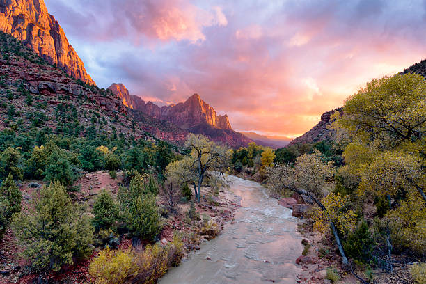 Watchman Sunset Incredible sunset over the Watchman, Zion National Park, Utah. zion national park stock pictures, royalty-free photos & images