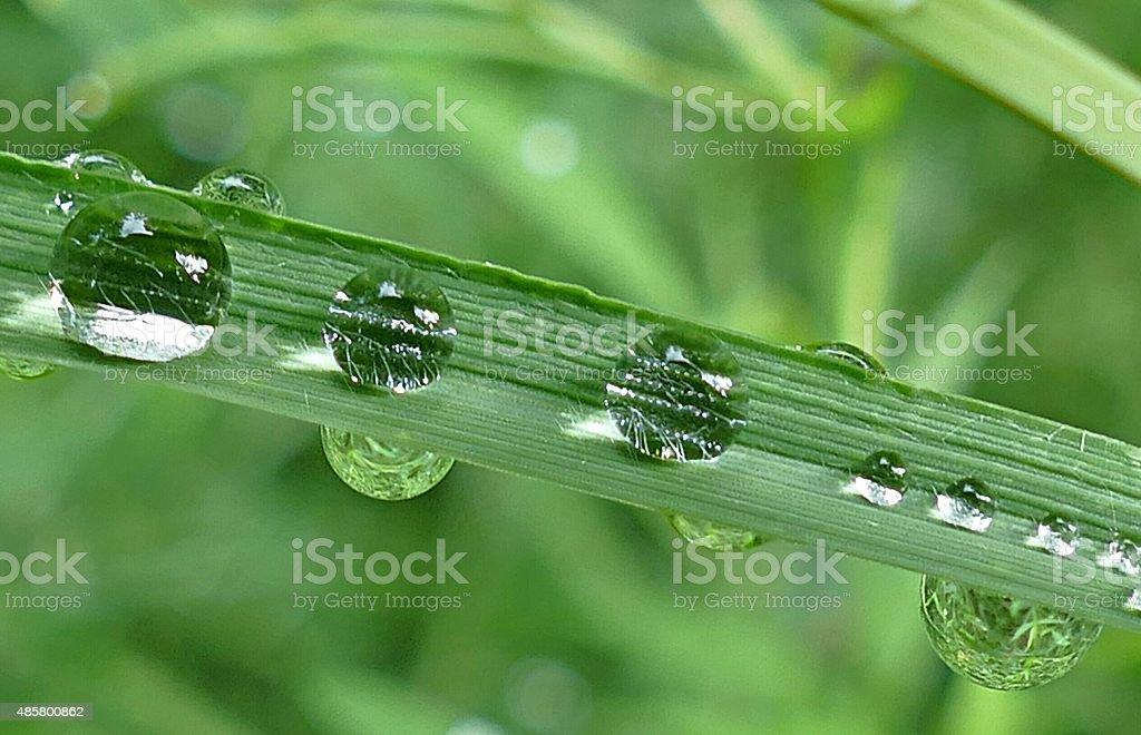 Wasser und Leben stock photo