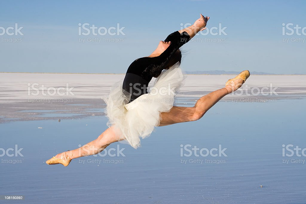 Water Ballet royalty-free stock photo