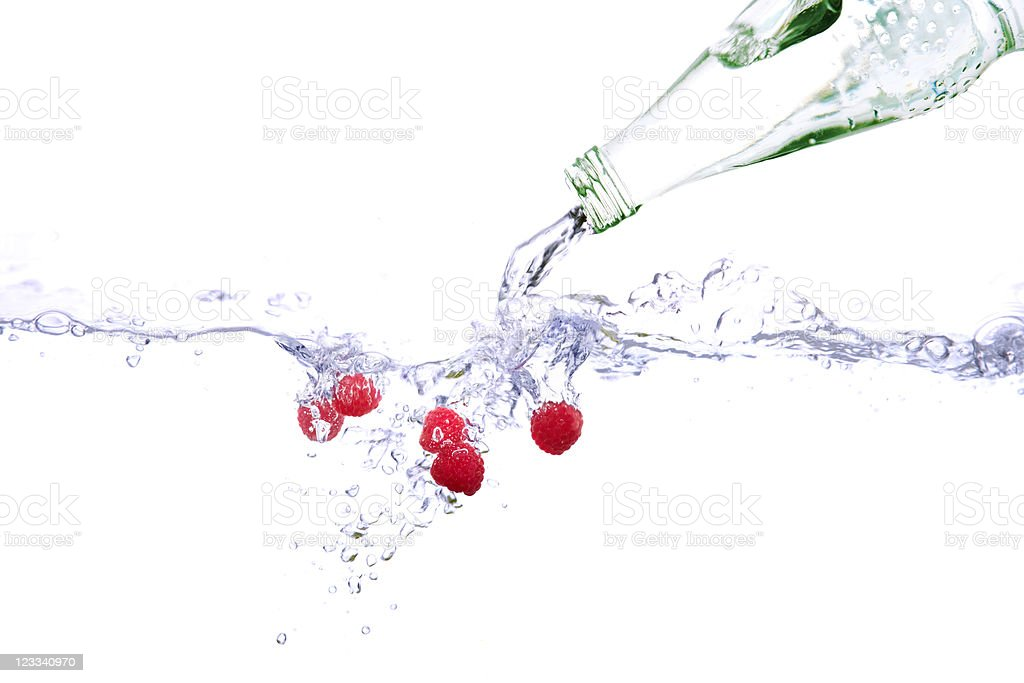 Water Bottle With Fruits royalty-free stock photo