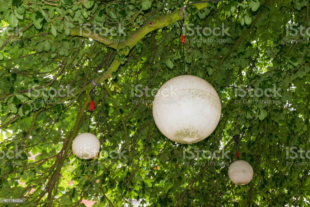 Water buoy used as a lamp on a tree stock photo