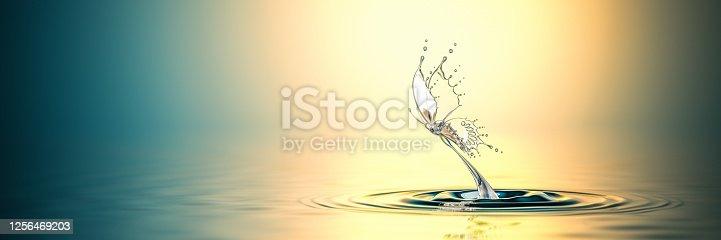 472598792 istock photo Water Butterfly Hot Splash 1256469203