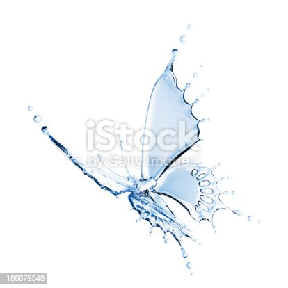155146839 istock photo Water Butterfly 186679348