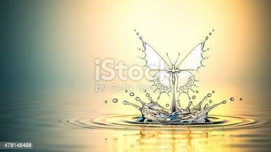 472598792istockphoto Water Butterfly 478148468