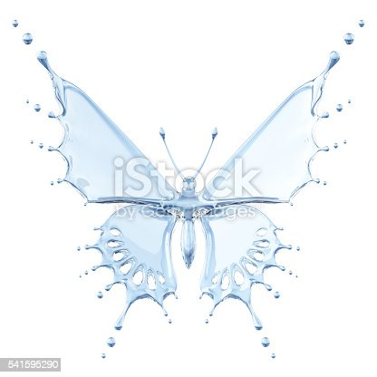 155146839 istock photo Water Butterfly 541595290
