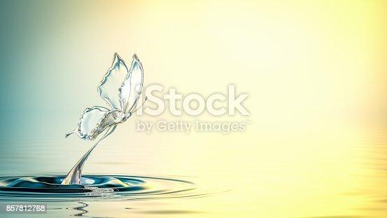 472598792istockphoto Water Butterfly 857812768
