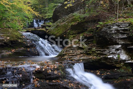 istock Water Cascade at Ricketts Glen State Park 493906346