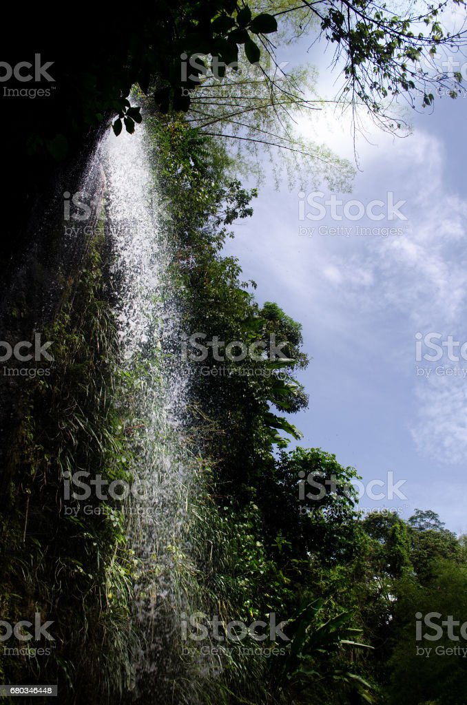 water cascading among foliage at toraille soufriere royalty-free stock photo