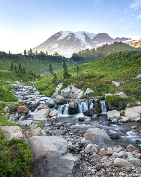 Water cascading through a meadow with Mount Rainier in the background.