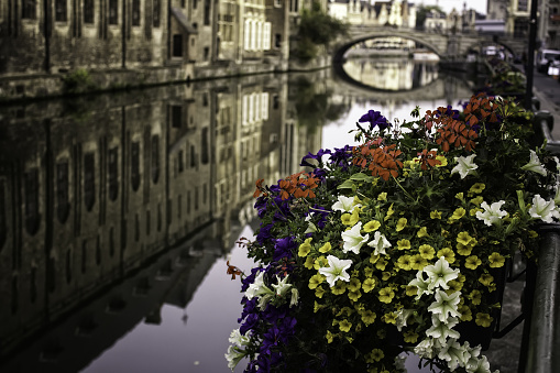 Water channels amsterdam, travel and tourism, landscape