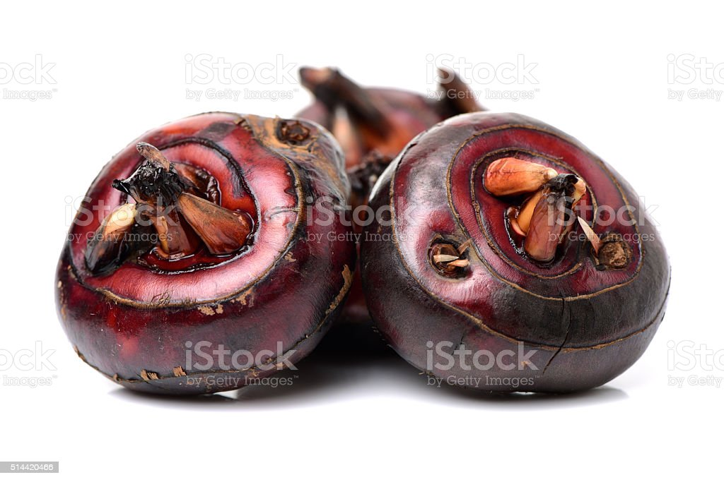 water chestnut stock photo
