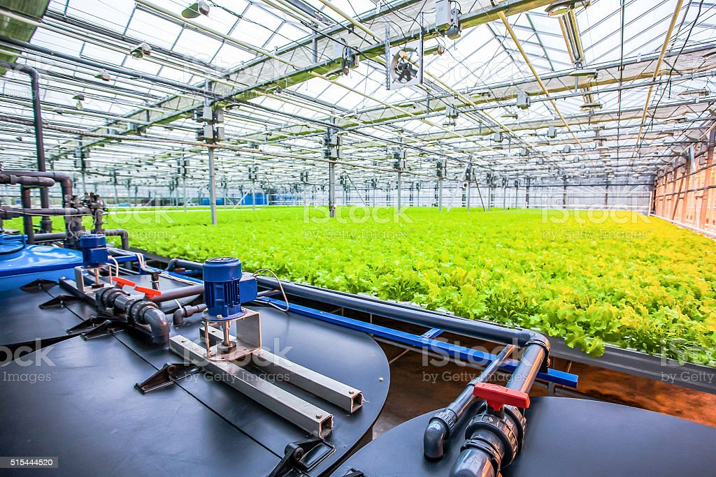 water conveying at hydroponic plantation stock photo