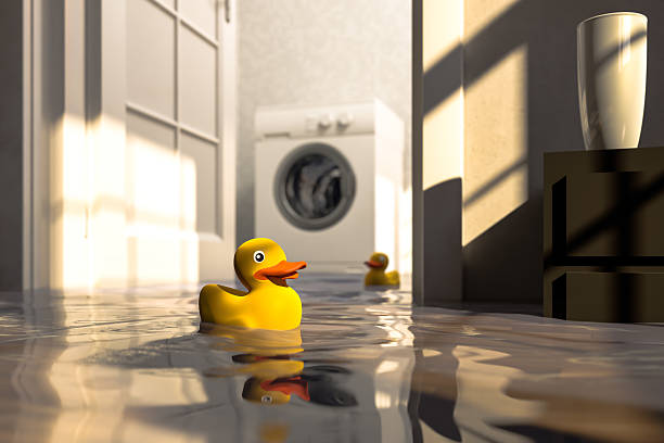 Water damage caused by defective washing machine and rubber ducks stock photo