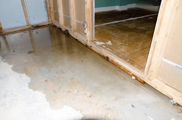 Water damage in basement caused by sewer backflow due to clogged sanitary drain